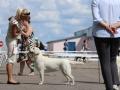 CHERRY PICK FIAMMA CANTANTE_Jul'18_1