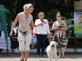 CHERRY PICK FIAMMA CANTANTE_Jul'18_6
