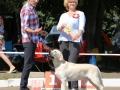DELIGHTED TO SUCCESS FIAMMA CANTANTE_Jul'18_1