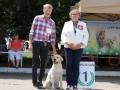 DELIGHTED TO SUCCESS FIAMMA CANTANTE_Jul'18_3