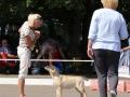 GIULIETTA INNAMORARSI DI FIAMMA CANTANTE_Jul'18_1