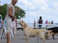 VITAL FLEURY FIAMMA CANTANTE_Jul'18_2