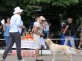 VITAL FLEURY FIAMMA CANTANTE_Jul'18_5