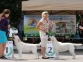 CHERRY PICK FIAMMA CANTANTE_Jul'18_3