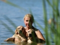 Litter M-4. The first swimming and hunting lessons_15