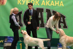 2xCAC_Kyiv, 27-28 Feb'2016, Acana and Espree Cups