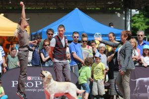 2xCACIB_Timisoara, Romania, 7-8 May'2016