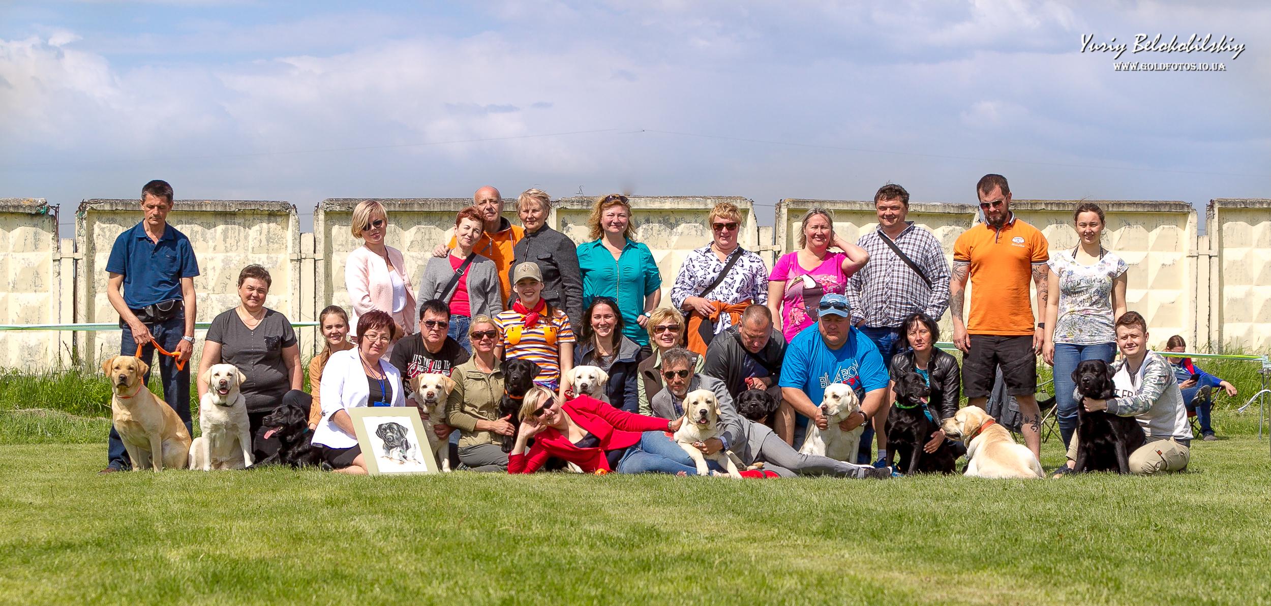 Labrador Team