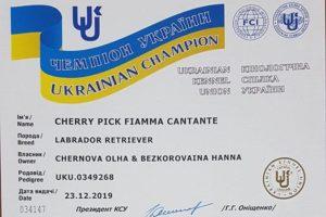 Cherry Pick – дважды Чемпион Украины